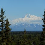 Mt. Denali, taken right in front of property
