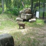 20160712_142042_large.jpg