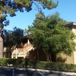 Photo de Comfort Inn Monterey Peninsula Airport
