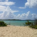 Vieques National Wildlife Refuge Foto