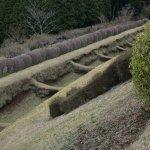 こんな堀もありました。城全体がこんな感じなので楽しいですよー