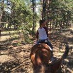 Foto de M Lazy C Ranch