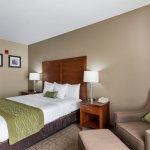 Comfort Inn & Suites Sacramento University Area Foto