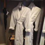 Closet with robes, umbrella and safe