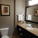 Holiday Inn Express Hotel & Suites Buford Foto