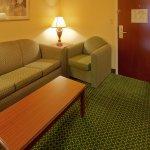 Photo of Holiday Inn Express & Suites Arlington