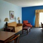 Foto di Holiday Inn Express Savannah I-95 North