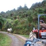 Farm tour --- met Tiberius