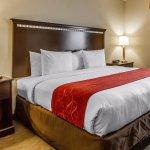 Photo of Comfort Suites Urbana Champaign, University Area