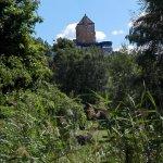 Scandic Foresta Photo