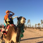 Camel back desert ride organised by the riad
