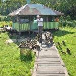 Kembang Island