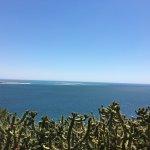 Photo of Rockalot Acqua Bay
