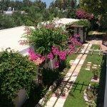 Gaia Garden Foto