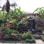 Lovely landscaping