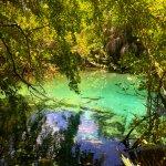 Photo of Indigenous Eyes Ecological Park & Reserve