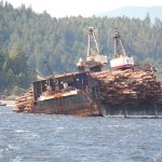 Self dumping log barge starting dumping