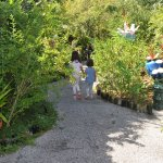 Sarasota Children's Garden