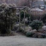 Harrogate Gardens Motel Foto