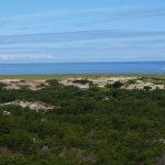Foto di Race Point Beach