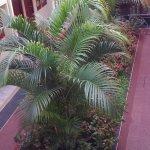 Photo of Hotel Jardin de Iguazu