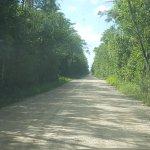 Loop Road Foto