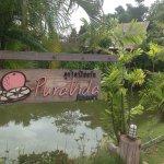 Pura Vida Resort Foto