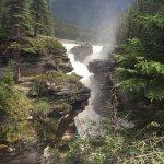 Foto de Athabasca Falls