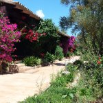 Photo of Finca Predio Son Serra