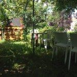 Terrasse sous les arbres