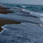 Cape Hatteras National Seashore Foto