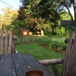enjoyed morning coffee at table near garden in back yard