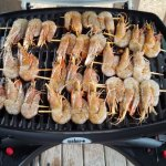 barbecue weber neuf en loc : 30 euro