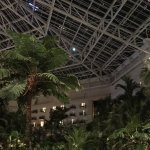 Photo of Gaylord Palms Resort & Convention Center