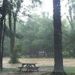 Foto de Lake Rudolph Campground & RV Resort