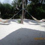 Pongwe Beach Hotel Foto