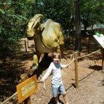 Foto de Wild Adventures Theme Park