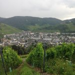 WeinBergHotel Nalbach Reil/Mosel Foto