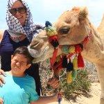 Photo de Outback & Camel Safari