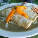 Presentation of enchiladas with rice and beans