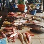 A proximité, débarquadère et marché au poissons le matin