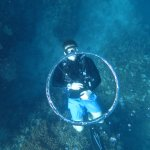 Photo de Blue Dive Port Douglas