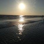 Foto di Guy Harvey Outpost, a TradeWinds Beach Resort