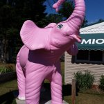 I loved the pink elephant!