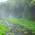 Photo de Shiraito Falls