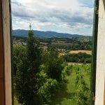 "Agritourism ""The Vineyard"" Foto"