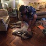Lapo is impossible dog!