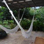 Rainforest Inn Foto