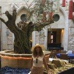 En el lobby también a veces comedor está el retoño de un árbol de Olivo de hace 3000 años atras