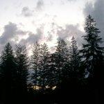 Kooser State park Foto
